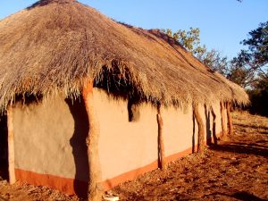 329508 zambian church 61